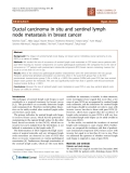 """Báo cáo khoa học: """"Ductal carcinoma in situ and sentinel lymph node metastasis in breast cancer"""""""