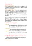 Tiểu luận về Thị Trường Chứng Khoán