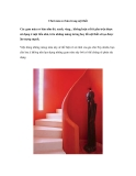 Chơi màu cơ bản trong nội thất