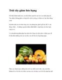 Trái cây ăn làm giảm béo bụng