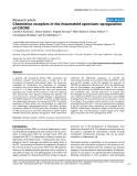"Báo cáo y học: ""Chemokine receptors in the rheumatoid synovium: upregulation of CXCR"""