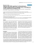"""Báo cáo y học: """"Defective CD4+CD25+ regulatory T cell functioning in collagen-induced arthritis: an important factor in pathogenesis, counter-regulated by endogenous IFN-γ"""""""