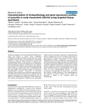 """Báo cáo y học: """"Characterization of histopathology and gene-expression profiles of synovitis in early rheumatoid arthritis using targeted biopsy specime"""""""