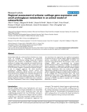 "Báo cáo y học: ""Regional assessment of articular cartilage gene expression and small proteoglycan metabolism in an animal model of osteoarthritis"""