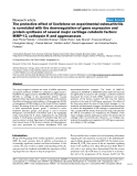 """Báo cáo y học: """"The protective effect of licofelone on experimental osteoarthritis is correlated with the downregulation of gene expression and protein synthesis of several major cartilage catabolic factors: MMP-13, cathepsin K and aggrecanase"""""""