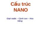 Cấu trúc NANO