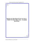 Baì báo cáo: Hoạt động kế toán của công ty TNHH TM XDGT Hồng Minh - Chi nhánh Hải Dương