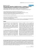 "Báo cáo y học: ""Macrophage migration inhibitory factor: a mediator of matrix metalloproteinase-2 production in rheumatoid arthritis"""