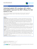 "Báo cáo khoa học: ""Cationized gelatin-HVJ envelope with sodium borocaptate improved the BNCT efficacy for liver tumors in vivo"""