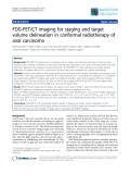"""Báo cáo khoa học: """"SemiFDG-PET/CT imaging for staging and target volume delineation in conformal radiotherapy of anal carcinoma"""""""