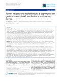 """Báo cáo khoa học: """"Tumor response to radiotherapy is dependent on genotype-associated mechanisms in vitro and in vivo"""""""