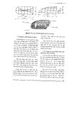 Một số nghề khai thác thủy sản ờ Việt Nam part 9