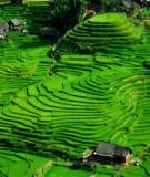 Sửa đổi Luật Đất đai ở Việt Nam 2004 qua cách nhìn của Doanh nghiệp