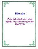 Báo cáo: Phân tích chính sách nông nghiệp Việt Nam trong khuôn khổ WTO