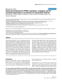 Novel dexamethasone-HPMA copolymer conjugate and its potential application in treatment of rheumatoid arthritis