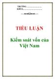 Tiểu luận: Kiểm soát vốn của Việt Nam
