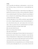 Bài viết về các quan niệm và vai trò chủ đạo của kinh tế chính phủ