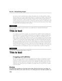 THE GIMP Bible PHẦN 4