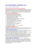 Máy Cắt Dây Molipden - Những điều cơ bản