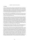 Giáo trình cơ sở kỹ thuật bờ biển - Chương 11