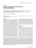 "Báo cáo y học: ""Vascular involvement in rheumatic diseases: 'vascular rheumatology"""