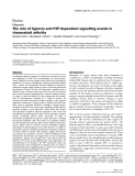 """Báo cáo y học: """"The role of hypoxia and HIF-dependent signalling events in rheumatoid arthritis"""""""
