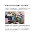 Sắc thu rực rỡ tràn ngập BST Thu của Prada