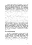 NHỮNG ĐIỂM CHỦ YẾU CỦA QUÁ TRÌNH CẢI CÁCH KINH TẾ NHẬP BẢN - 4