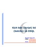 Kịch bản (script) bó (batchs) và OSQL
