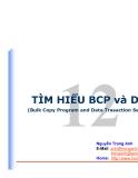 TÌM HIỂU BCP và DTS