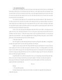 """Đề tài """" xuất nhập khẩu của các doanh nghiệp có vốn đầu tư trực tiếp nước ngoài tại Việt Nam """""""