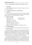 Thí nghiệm Công nghệ thực phẩm - Chương 2 Công nghệ lên men - Bài 4