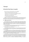 Di truyền tế bào ( Nguyễn Như Hiền ) - Chương 8