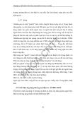 Tìm hiểu và xây dựng thương mại điện tử (Dương Thị Hải Điệp vs Phan Thị Xuân Thảo) - 2
