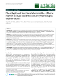 """Báo cáo y học: """"Phenotypic and functional abnormalities of bone marrow-derived dendritic cells in systemic lupus erythematosus"""""""