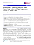 """Báo cáo y học: """" Hemoglobin a and b are ubiquitous in the human lung, decline in idiopathic pulmonary fibrosis but not in COPD"""""""