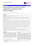 "Báo cáo y học: "" Pharmacotherapy in pulmonary arterial hypertension: a systematic review and meta-analysis"""