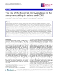 """Báo cáo y học: """"  The role of the bronchial microvasculature in the airway remodelling in asthma and COPD"""""""