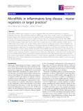 "Báo cáo y học: "" MicroRNAs in inflammatory lung disease - master regulators or target practice?"""