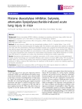 """Báo cáo y học: """"Histone deacetylase inhibitor, butyrate, attenuates lipopolysaccharide-induced acute lung injury in mice"""""""