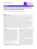 """Báo cáo y học: """"Cigarette smoking, cadmium exposure, and zinc intake on obstructive lung disorder"""""""
