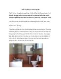 Thiết kế phòng vệ sinh trong nhà