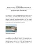 Hồ chứa nước Ialy