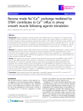 """Báo cáo y học: """" Reverse mode Na+/Ca2+ exchange mediated by STIM1 contributes to Ca2+ influx in airway smooth muscle following agonist stimulation"""""""