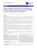 """Báo cáo y học: """"  Nogo-B regulates migration and contraction of airway smooth muscle cells by decreasing ARPC 2/3 and increasing MYL-9 expression"""""""