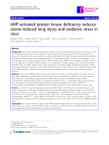 """Báo cáo y học: """"  AMP-activated protein kinase deficiency reduces ozone-induced lung injury and oxidative stress in mice"""""""