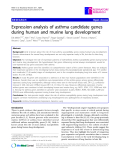 """Báo cáo y học: """" Expression analysis of asthma candidate genes during human and murine lung development"""""""