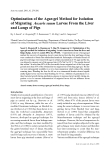 """Báo cáo khoa học: """"Optimization of the Agar-gel Method for Isolation of Migrating Ascaris suum Larvae From the Liver and Lungs of Pigs"""""""