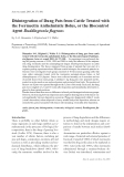 """Báo cáo khoa học: """"Disintegration of Dung Pats from Cattle Treated with the Ivermectin Anthelmintic Bolus, or the Biocontrol Agent Duddingtonia flagrans"""""""