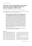 "Báo cáo khoa học: ""Campylobacter spp., Salmonella spp., Verocytotoxic Escherichia coli, and Antibiotic Resistance in Indicator Organisms in Wild Cervids"""